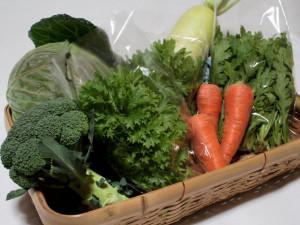 わさび菜と野菜セット