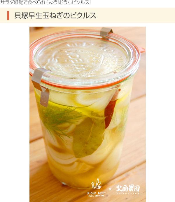 サラダ感覚で食べられちゃう!おうちピクルス!:貝塚早生玉ねぎのピクルス