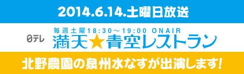 banner-main-tv (1)
